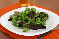 Salade d'une plaque Image stock