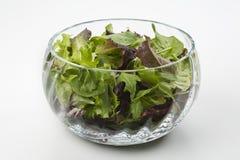 Salade dans une cuvette en verre image stock