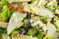 Salade de blanc de poulet avec l'oeuf Photos stock