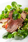 Salade de boeuf photographie stock libre de droits