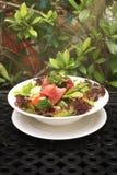 Salade de boeuf Images libres de droits