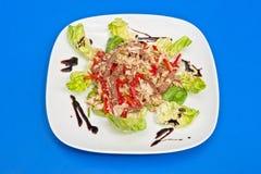 Salade de boeuf de rôti Image stock