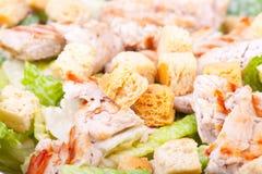 Salade de César photographie stock libre de droits