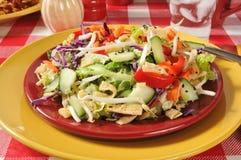 Salade de côtelette de Chinois Photo libre de droits