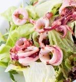 Salade de calmar Photographie stock