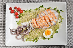 Salade de calmar de récif de Bigfin Image libre de droits