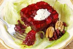 Salade de canneberge Image libre de droits