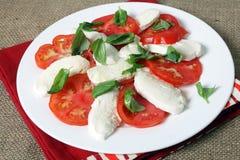 Salade de Caprese Photographie stock libre de droits