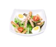 Salade de Ceaser Fotografia de Stock