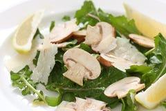 Salade de champignon de couche photos libres de droits