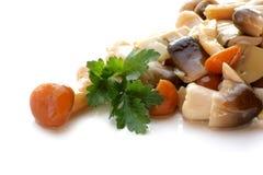 Salade de champignon de couche Images stock