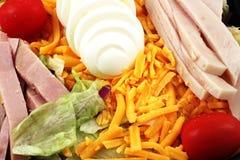 Salade de chef Images libres de droits