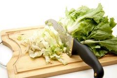 Salade de chicorées frisées es/scarole avec le couteau photographie stock