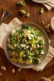 Salade de chou frisé et de chou de Bruxelles photos stock