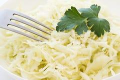 Salade de choux image libre de droits