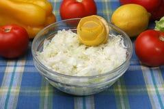 Salade de choux Photographie stock