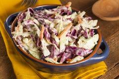 Salade de choux faite maison avec le chou et la laitue déchiquetés photographie stock libre de droits