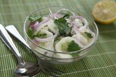 Salade de concombre avec la chaux et le cilantro photographie stock libre de droits