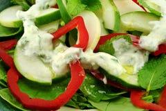 Salade de concombre et de menthe Image stock