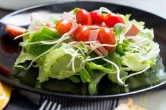 Salade de Cos image stock
