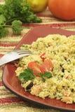 Salade de couscous Photographie stock libre de droits