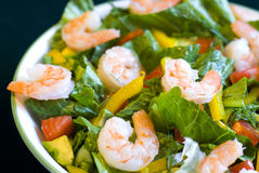 Salade de crevette Images libres de droits