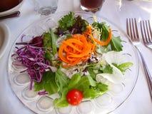 Salade de dîner Image stock