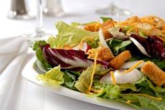 Salade de dîner photos stock