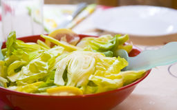 Salade de fenouil avec le citron Image stock