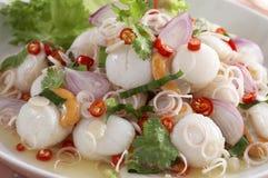 Salade de feston épicée Photo libre de droits