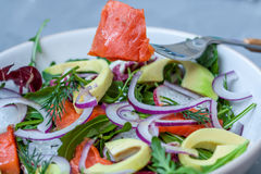 Salade de feu vert avec les saumons fumés et l'avocat Photo stock