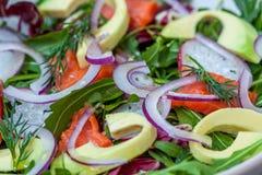 Salade de feu vert avec les saumons fumés et l'avocat Photographie stock libre de droits