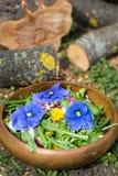 Salade de fleur photos libres de droits