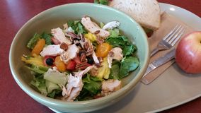 Salade de fraise et de poulet avec Poppy Seed Dressing Image libre de droits