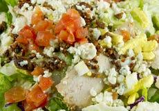Salade de fromage de Gorgonzola de poulet Images stock