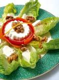 Salade de fromage frais Image stock