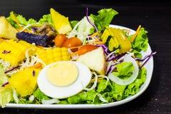 Salade de fruits de légumes et Images libres de droits