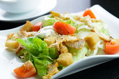 Salade de jardin avec le filet de poulet Image stock