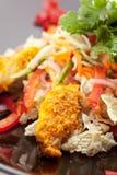 Salade de Korma de poulet Image libre de droits