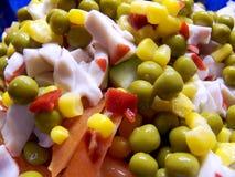 Salade de légume frais Photos stock