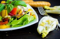 Salade de légume frais avec du pain et le fenouil photos libres de droits