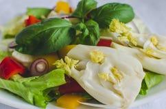 Salade de légume frais avec le fenouil image libre de droits