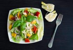 Salade de légume frais avec le fenouil images libres de droits