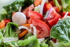 Salade de légume frais de plaque Image libre de droits