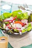 Salade de légumes avec le radis et le sésame noir images libres de droits