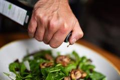 Salade de laitue photographie stock libre de droits