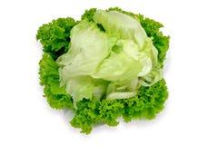 Salade de laitue photo stock