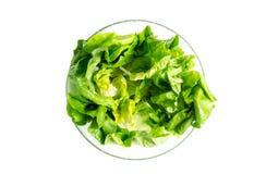 Salade de laitue dans un bol en verre Image libre de droits