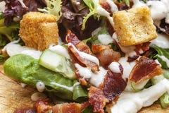 Salade de lard Image libre de droits