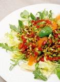 Salade de lentille Photos libres de droits
